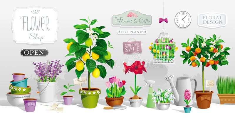 Collection of pot plants stock illustration