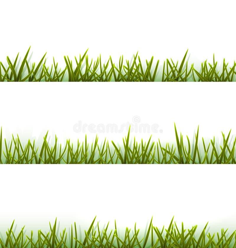 Collection réaliste d'herbe verte d'isolement sur le blanc illustration de vecteur