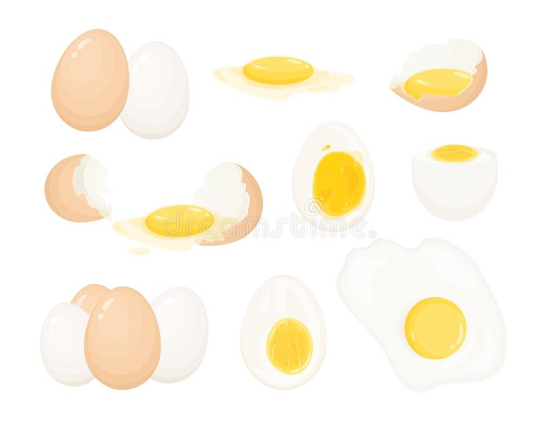Collection of raw, boiled and fried eggs, peeled and covered with eggshell. Bundle of delicious high-protein food. Products isolated on white background vector illustration