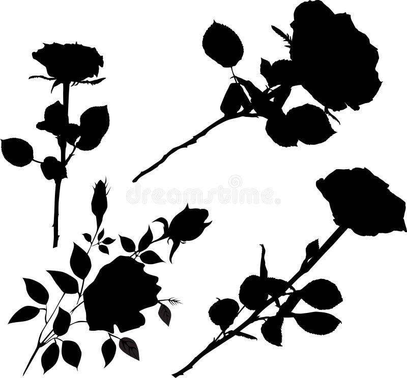 Collection rose de fleurs de noir illustration stock