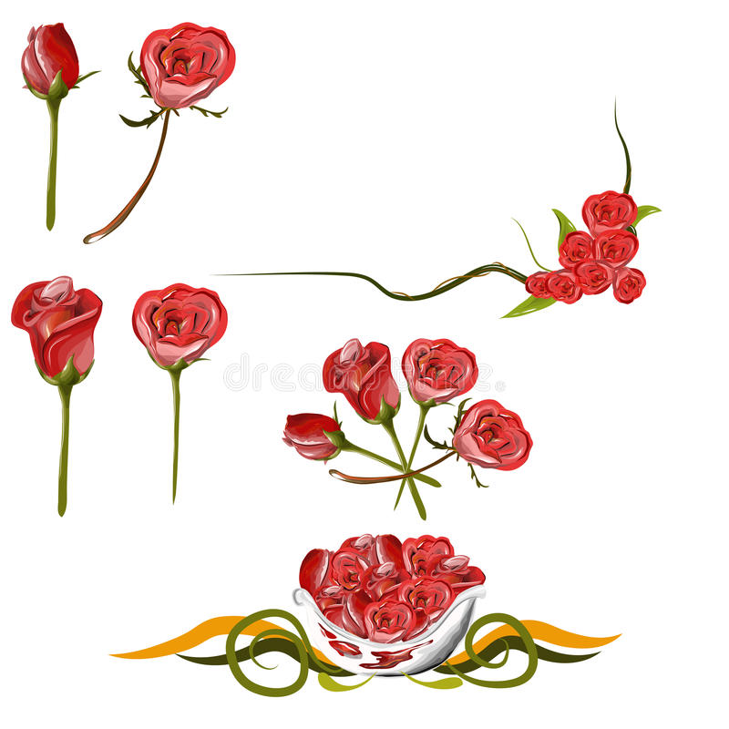 Download Collection Of Rose Royalty Free Stock Images - Image: 31207449