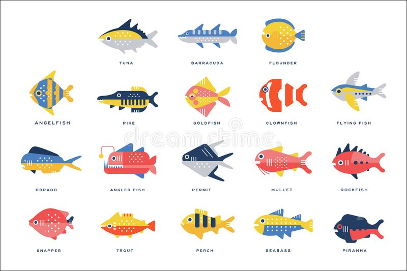 Collection of sea and river fish and lettering name in English vector Illustrations. On a white background royalty free illustration