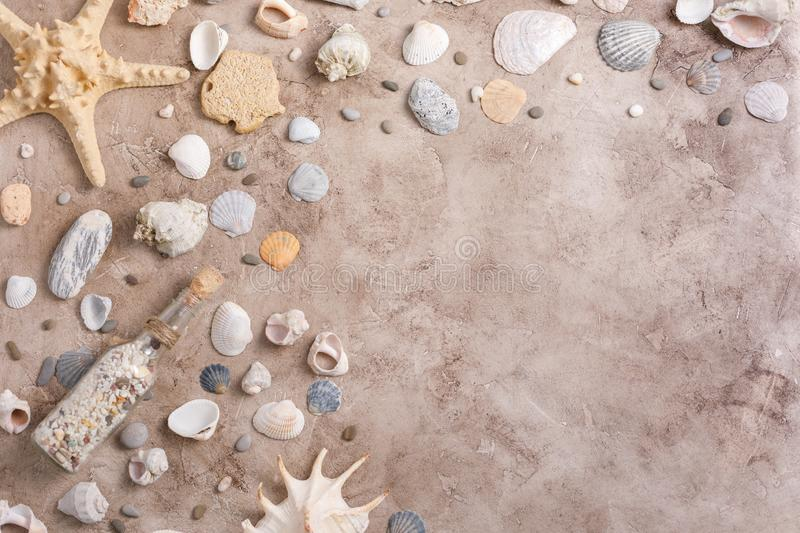 A collection of seashells in a starfish on a textural background. The concept of flat lay. A collection of seashells in a starfish on a textural background. The stock photos