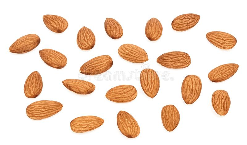 Collection seeds nut Almonds isolated on white background. Group Almond nuts closeup. Organic food royalty free stock photo