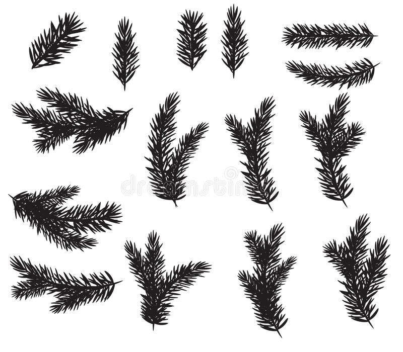 Collection Set of Realistic Fir Branches Silhouette for Christmas Tree, Pine. Vector Illustration. EPS10 stock illustration