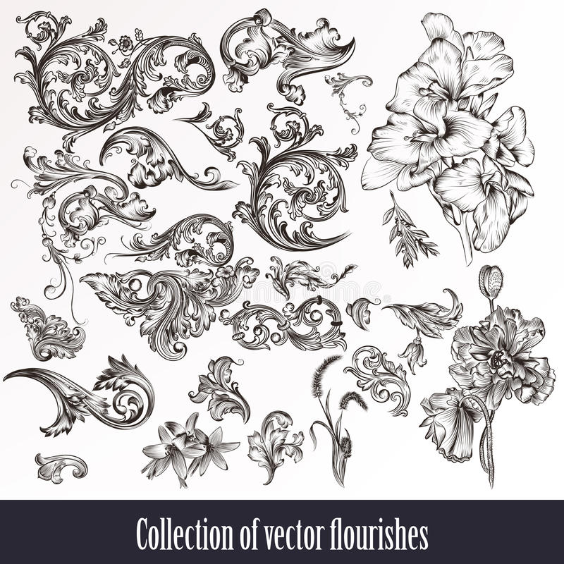A collection or set of vintage styled flourishes filigree drawn stock illustration