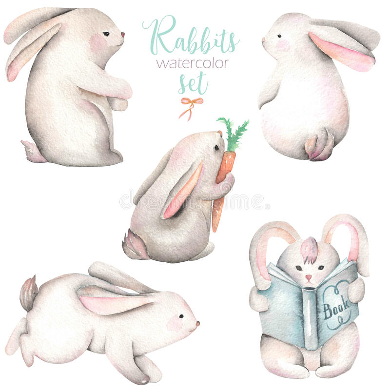 Collection, set of watercolor cute rabbits. Illustrations, hand drawn isolated on a white background royalty free illustration