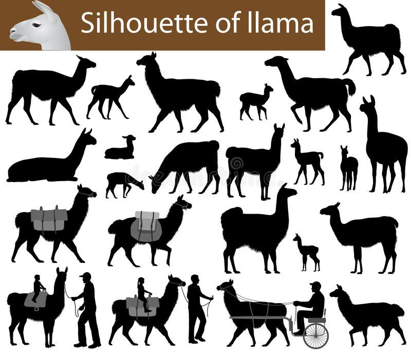 Collection of silhouettes of llamas and its cubs. Vector illustration royalty free illustration