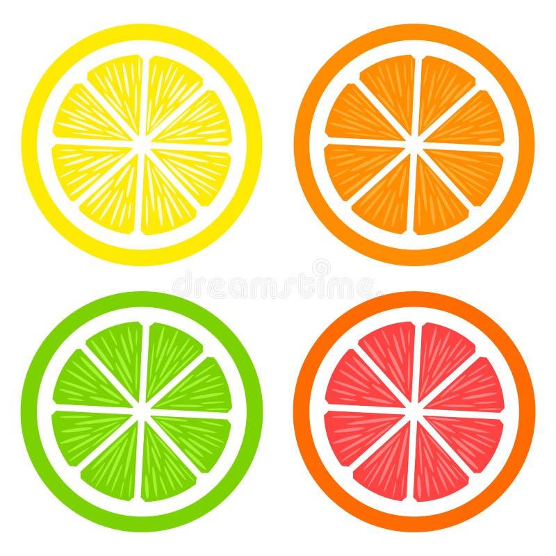 Collection of slices lemon, orange, grapefruit and lime on white background royalty free illustration