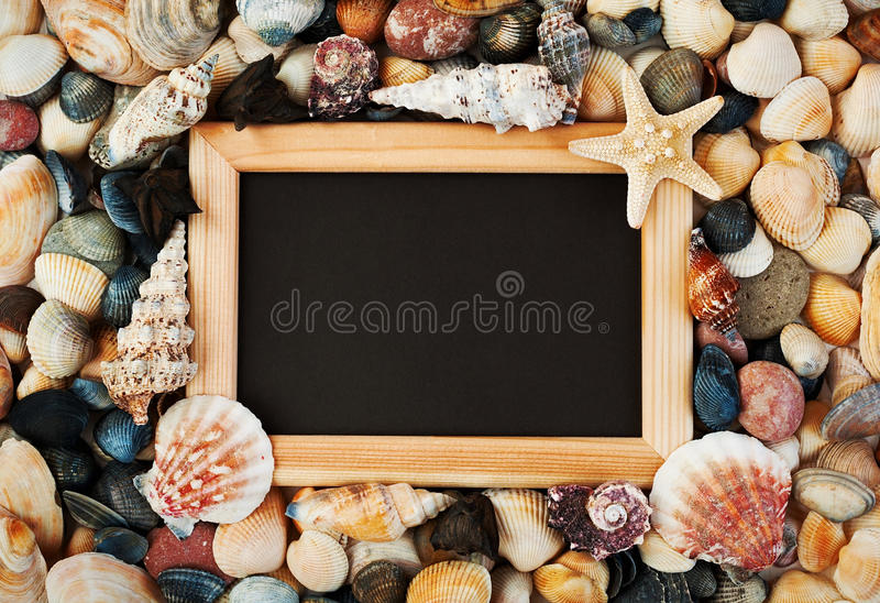Collection of starfish and seashells with tablet royalty free stock image
