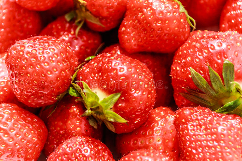 Download Strawberry stock photo. Image of ripe, fresh, leaves - 30081042