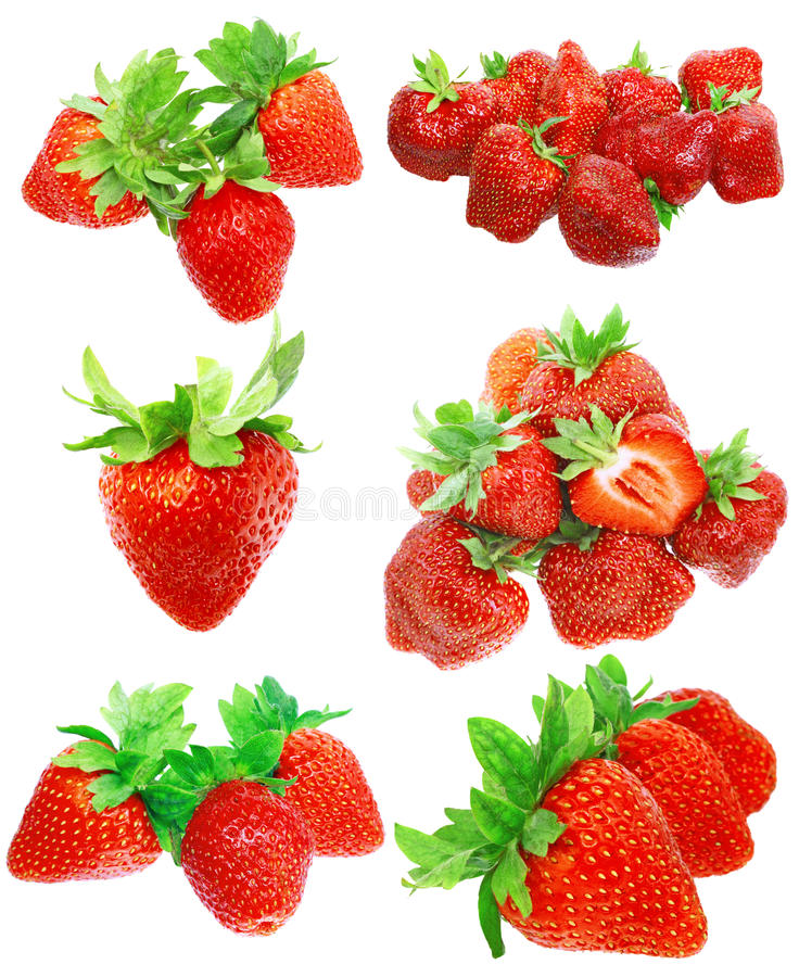 Download Collection Of Strawberries On White. Isolated Stock Photography - Image: 23109482