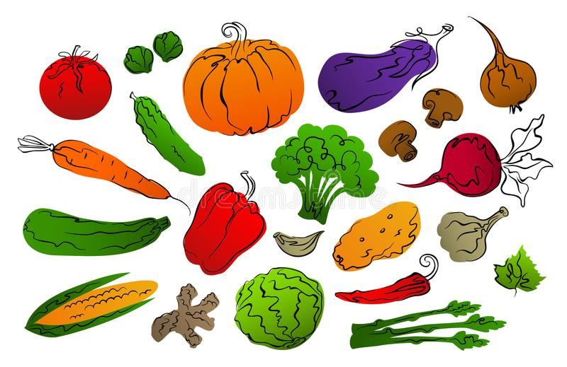 Collection of stylized gradient filled and black hand drawn outlines vegetables royalty free illustration