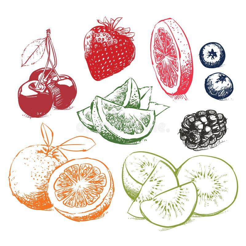 Collection tirée par la main de croquis de fruits Illustration de vecteur images libres de droits