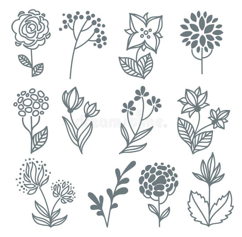 Collection tirée par la main de fleurs de vecteur illustration libre de droits