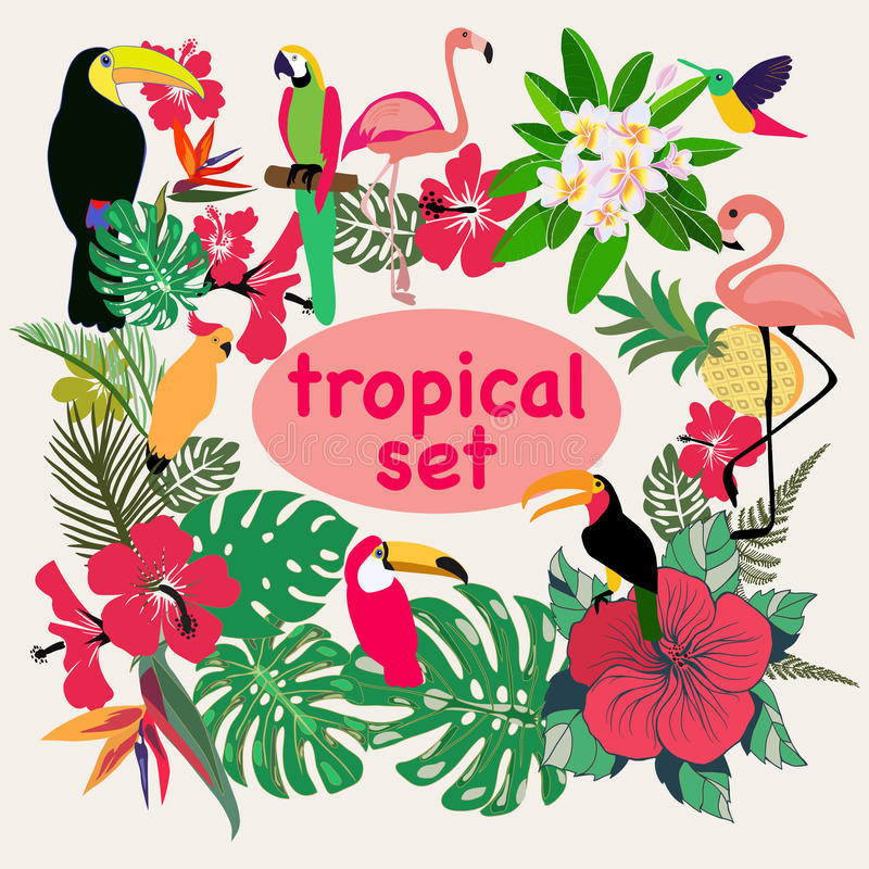 Collection of tropical birds, palm leaves and flowers royalty free illustration