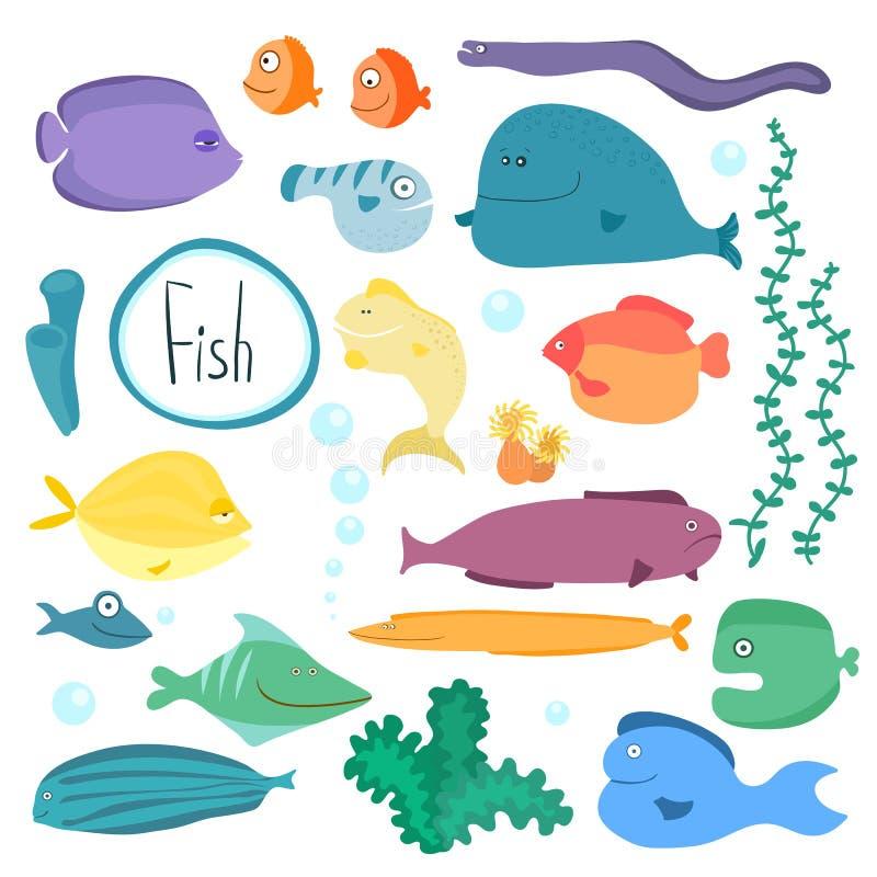 Collection tropicale de poissons de vecteur d'isolement illustration stock