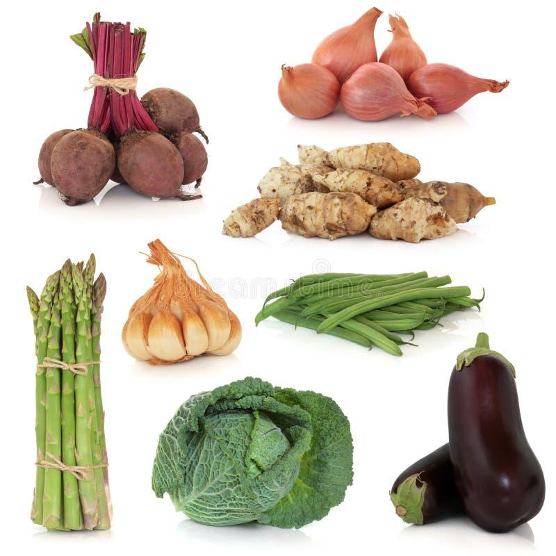 Collection végétale images stock