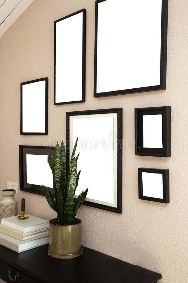 Collection of various blank black frames on wall with modern decoration, green plant in a lovely home stock photos