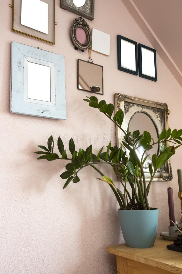 Collection of various blank black frames on wall with modern decoration, green plant in a lovely home retro design royalty free stock photography