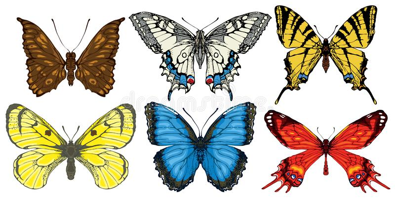 Vector set of various bright colorful butterflies stock illustration