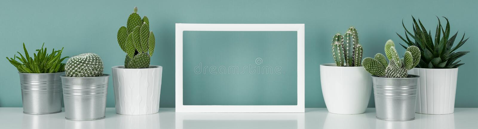 Potted house plants on white shelf against turquoise colored wall and picture frame mock up banner. royalty free stock image