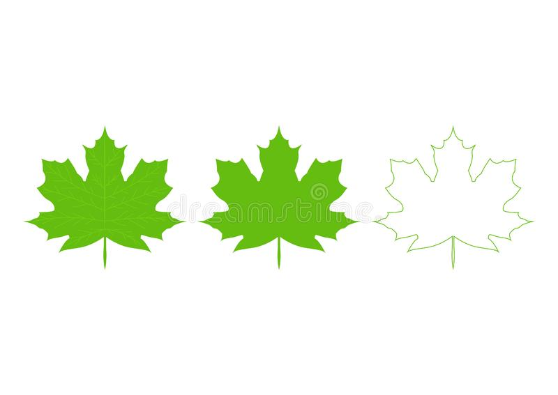 A collection of  Canadian maple leaf icons. Silhouette of autumn leaves icon set isolated on white background stock photography