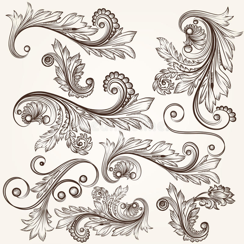 Collection of vector hand drawn swirls design vector illustration