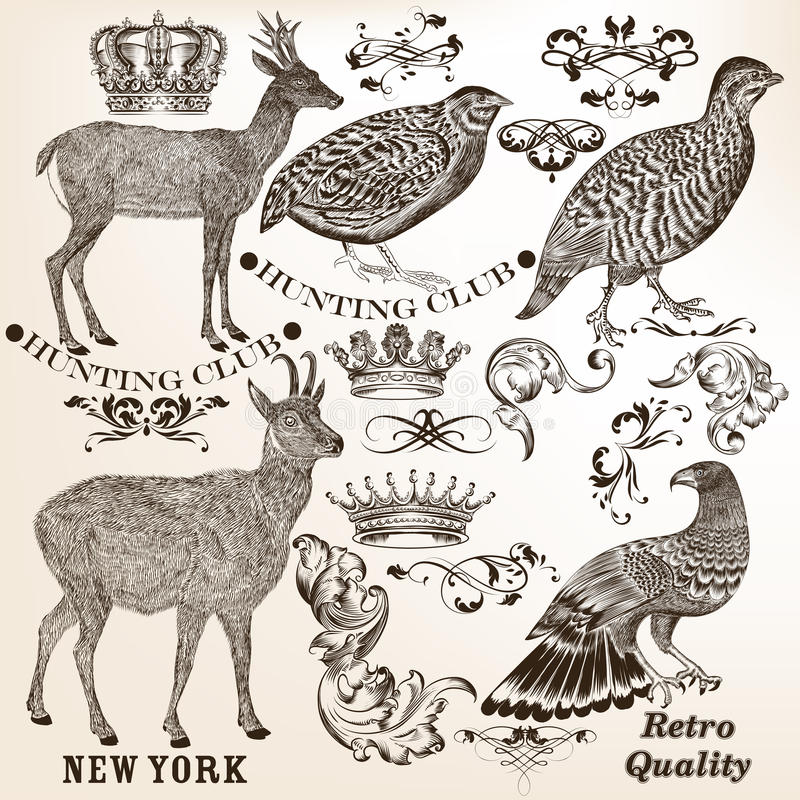Collection of vector hand drawn vintage elements stock illustration