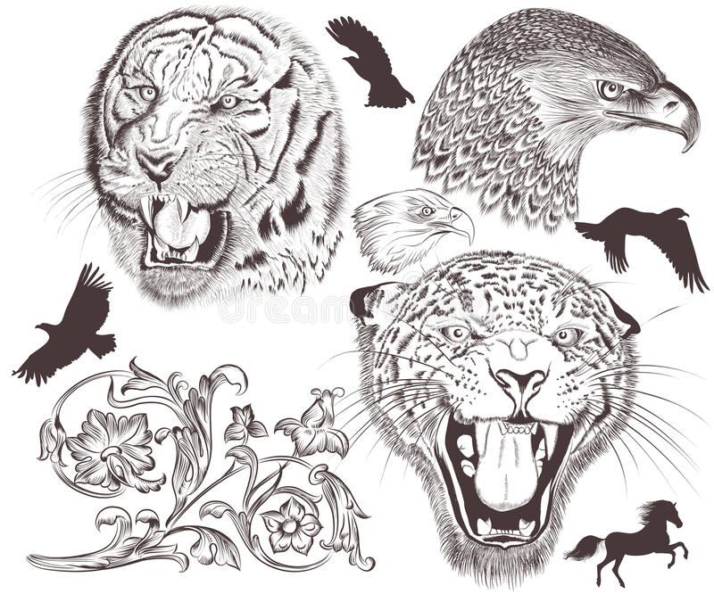 Collection of vector high detailed animals for design stock illustration