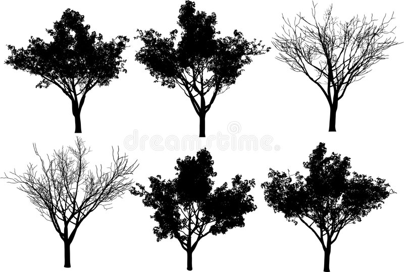 Collection vector trees vector illustration