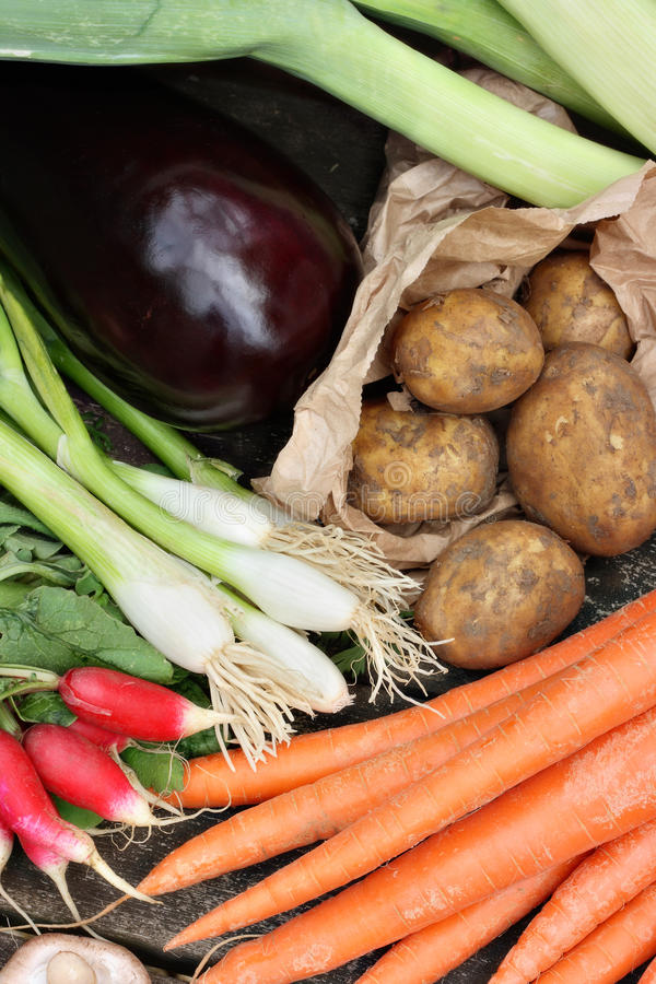Download Collection of vegetables stock photo. Image of potato - 19555752