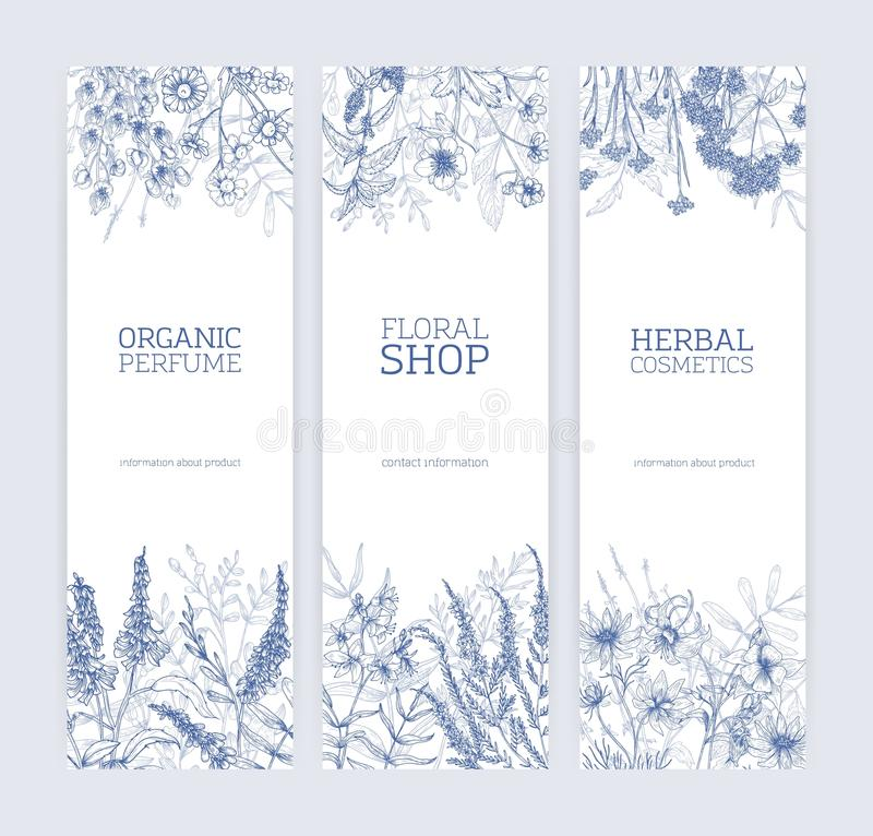 Collection of vertical banners decorated with wild flowers and flowering meadow herbs hand drawn with contour lines on vector illustration