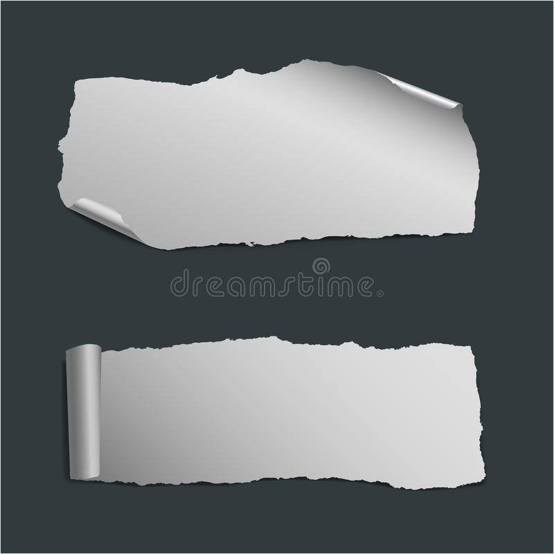 Download Collection Of  White Ripped Paper Pieces Stock Vector - Illustration: 24638486