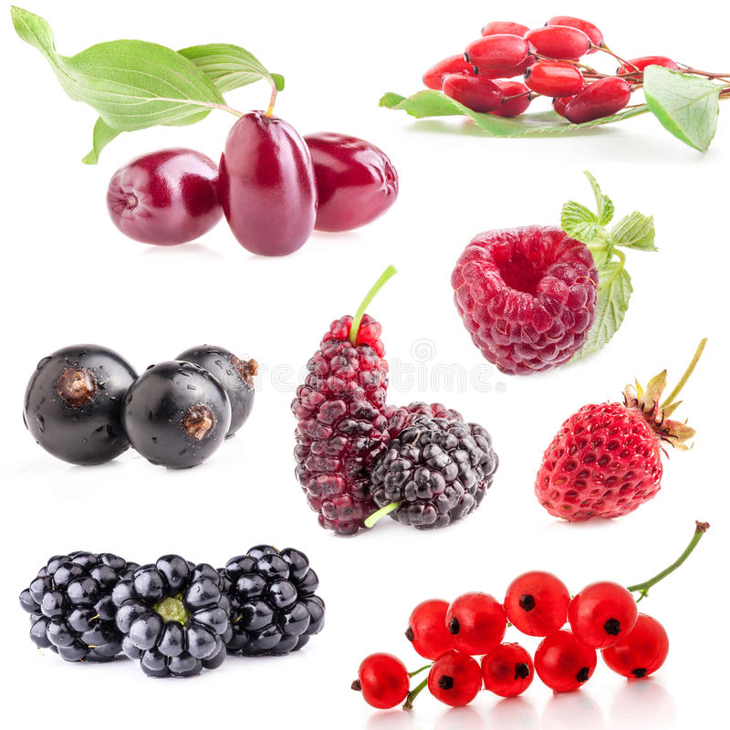Collections of berry. Isolated on white background stock image