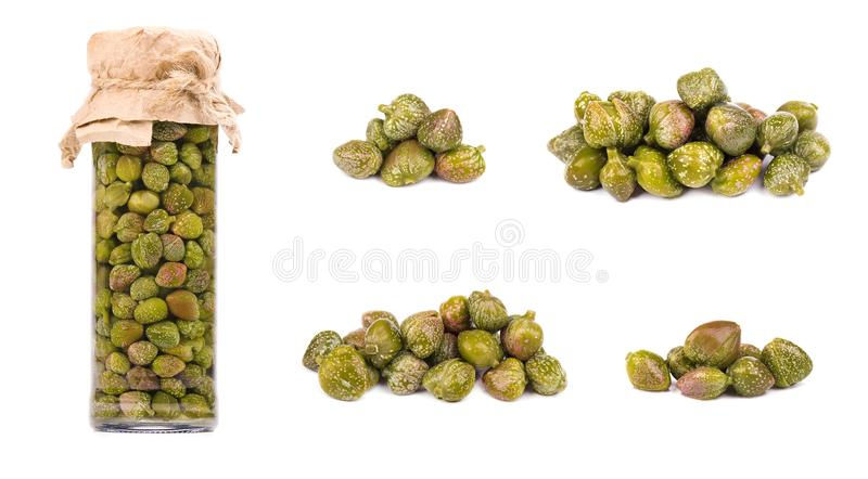 Collections of capers isolated on white background. Pickled capers. Canned capers royalty free stock photos
