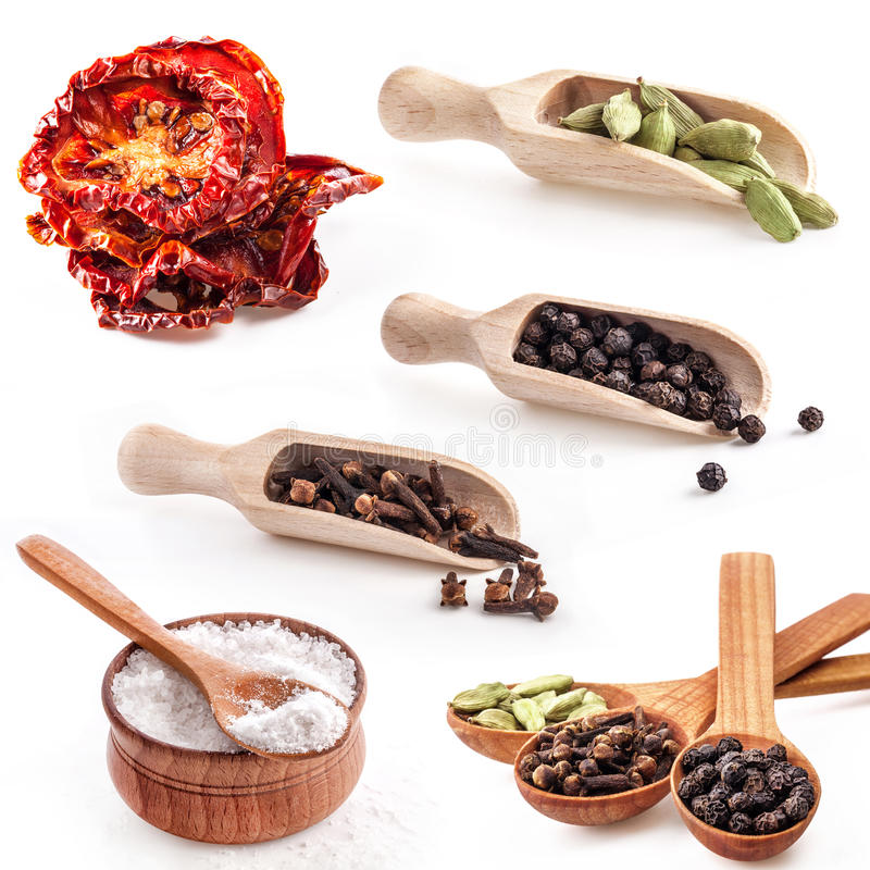 Collections of spice. On white background stock images
