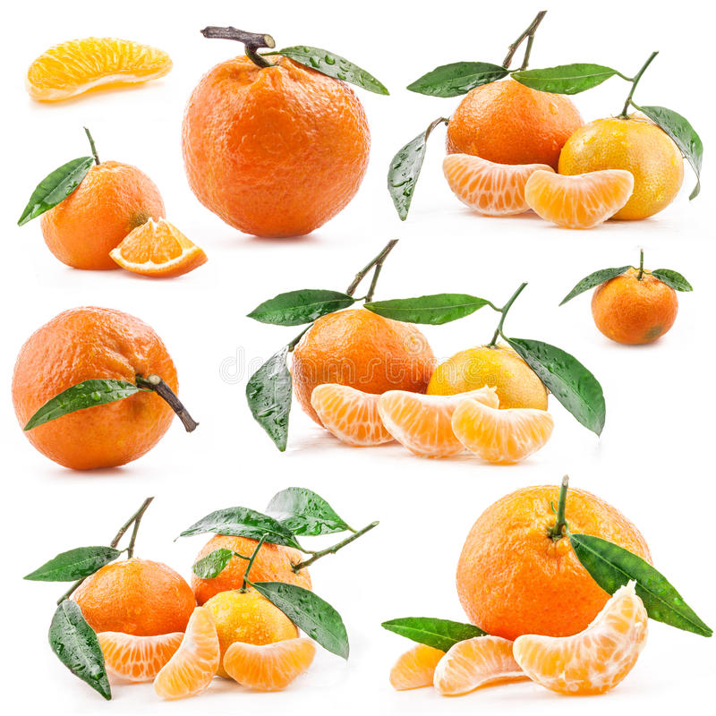 Collections of Tangerines. With green leaves and water drops isolated on white background royalty free stock images