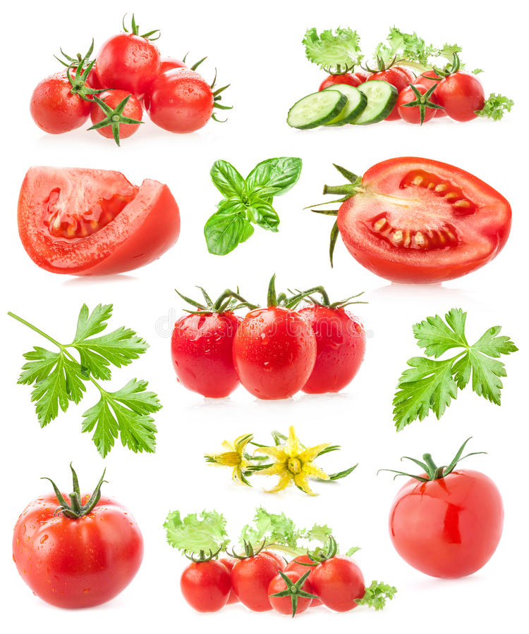 Collections of tomatoes. Isolated on white background royalty free stock photo