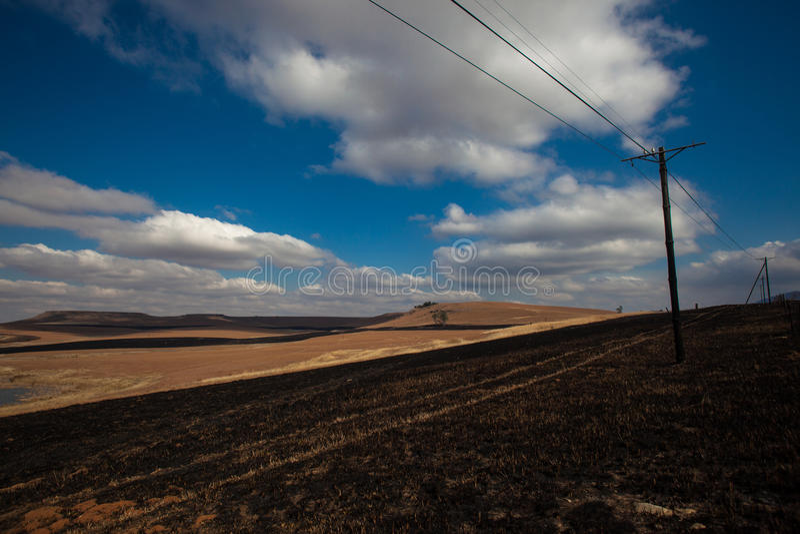 Collegare di telefono dei tagliafuochi di inverno Pali immagine stock libera da diritti