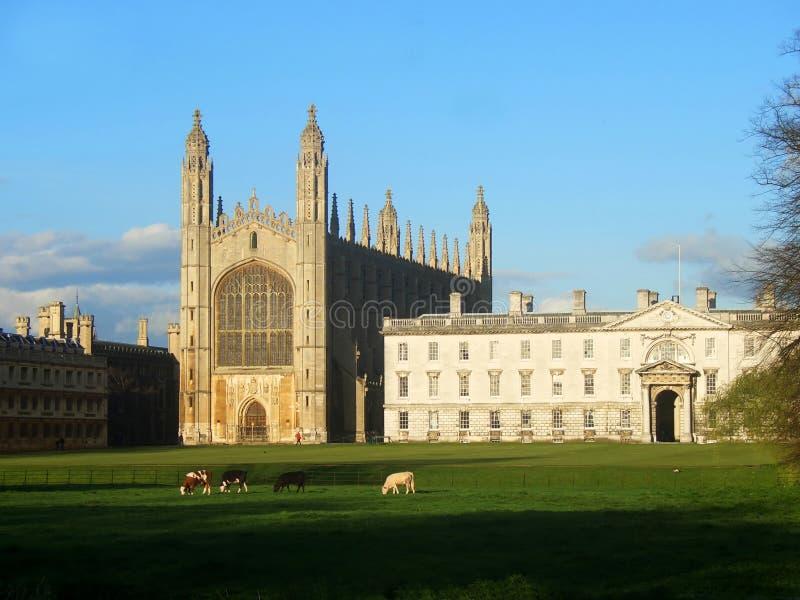 College Chapel, Cambridge, Reino Unido de rey fotos de archivo