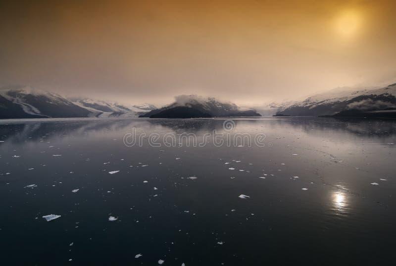 College-Fjord in Alaska stockfotografie