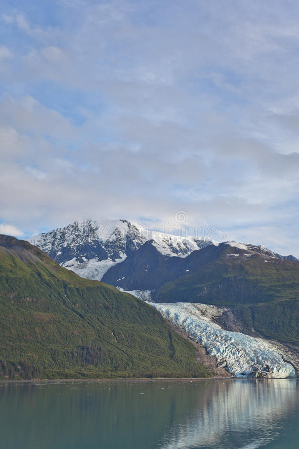 College-Fjord-Gletscher stockbilder