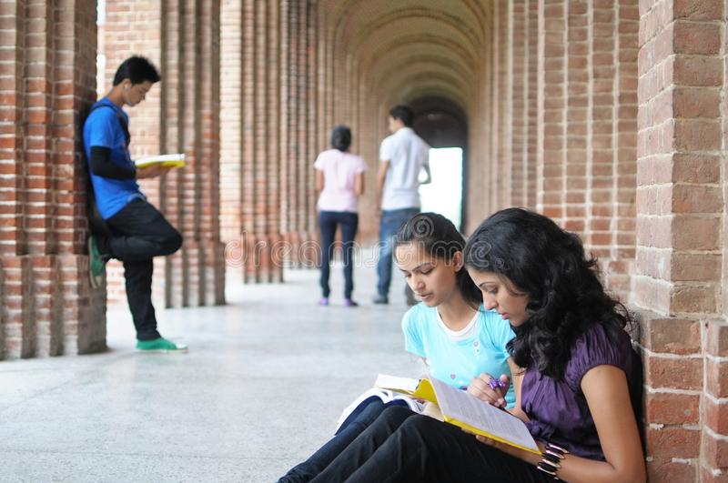 College students preparing for examination. stock image
