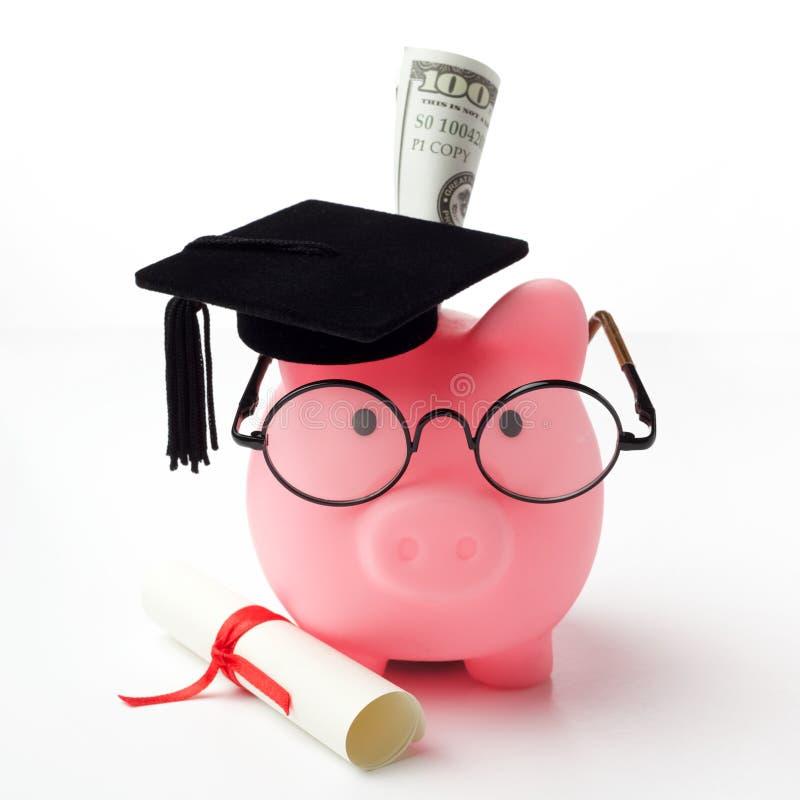 Collegestudent im aufbaustudiumen-Diplomsparschwein lokalisiert auf weißem Hintergrund lizenzfreie stockfotos