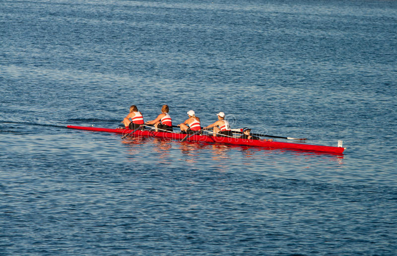 Download Collegiate Rowing Teams Practice On The Pacific Editorial Photo - Image: 21978091