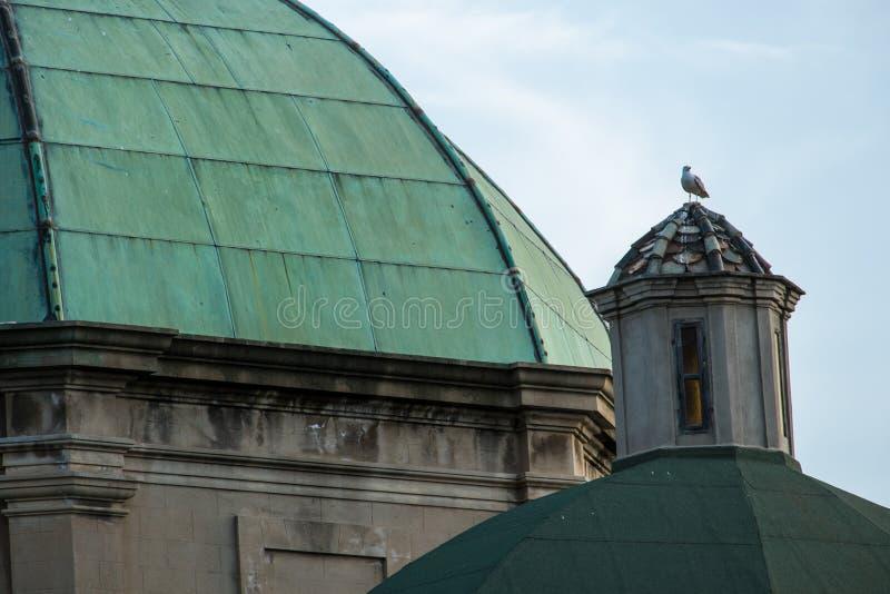 Collegiate of Saint Anne stock photography