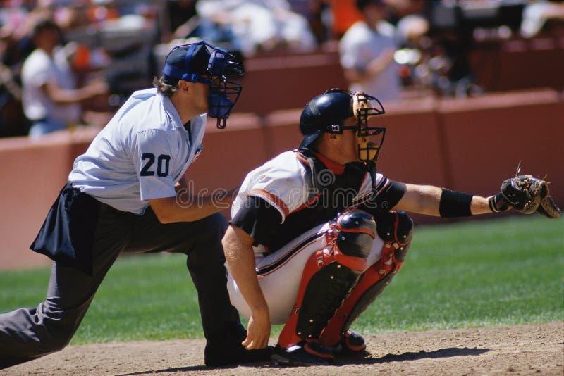 Collettore di baseball fotografia stock