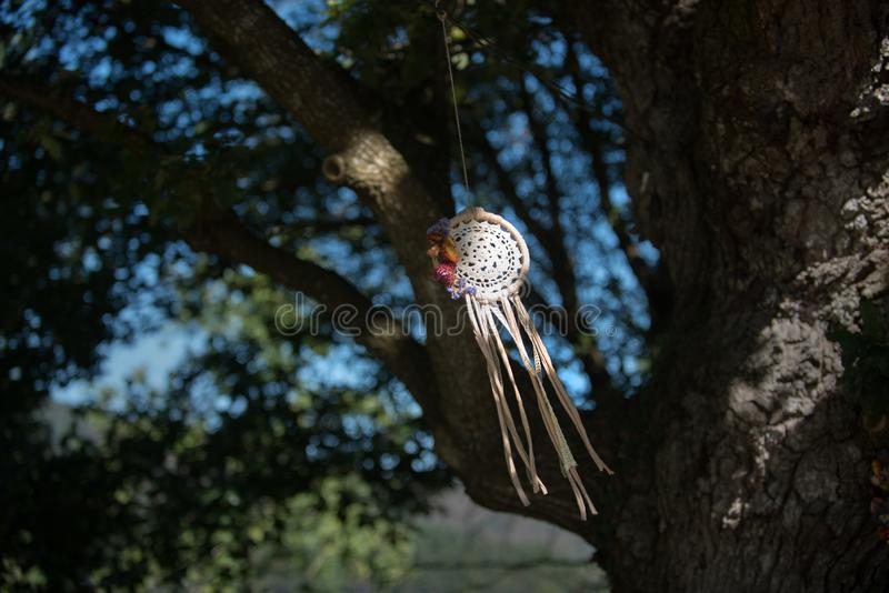 Collettore di sogno con sfondo naturale nello stile d'annata eleganza di boho, amuleto etnico fotografia stock libera da diritti