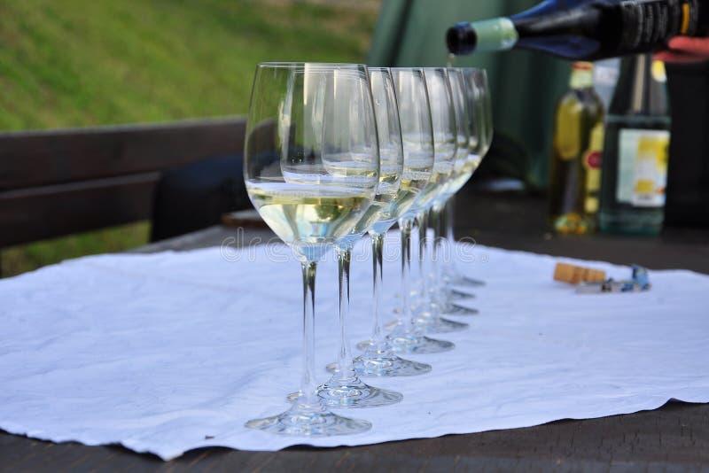 Colli Orientali del Friuli, Italien Exponeringsglas för vinavsmakning fotografering för bildbyråer